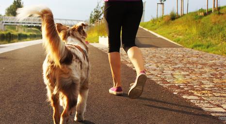 personne obèse fait une marche sur le bord de la route