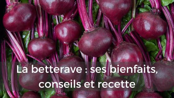 betterave rouge bienfaits conseils recette